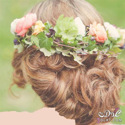 تسريحات شعر العروسة لعام