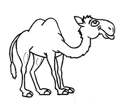 Showthread on Vector Desert Worksheets For Preschool