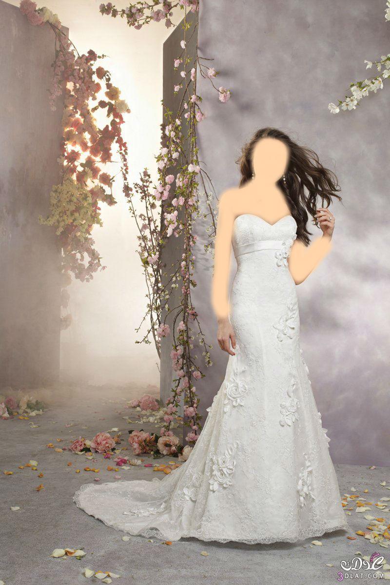 فساتين زفاف فساتين زفاف جديدة 2021 فساتين زفاف رائعة 2021