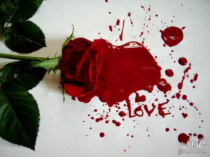 صور رومانسية جميلة 13789314615