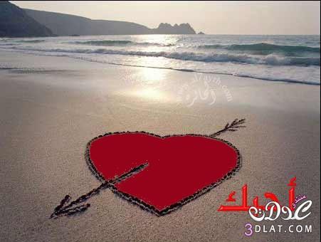 صور رومانسية جميلة 13789314658