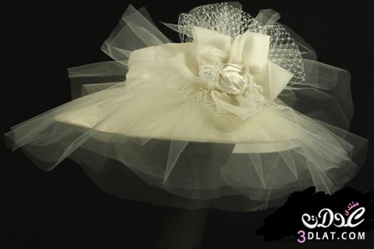 قبعات لزفاف عروسة عرائس الجزائر  قبعات رووعة جدا