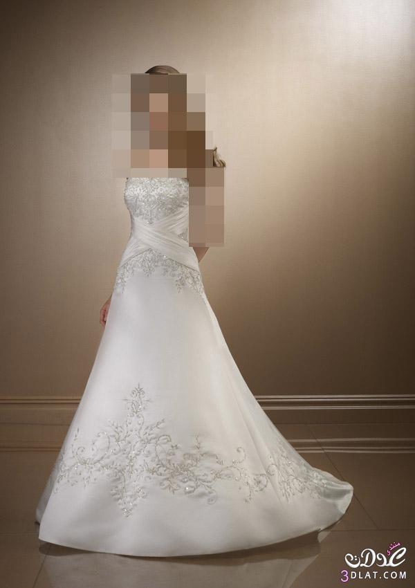 فساتين زفاف للاميرات فساتين زفاف للجميلات  فساتين زفاف روعة