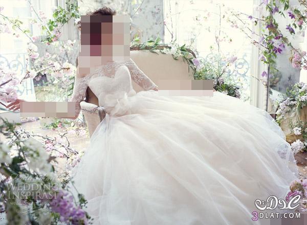 Tara Keely Fall 2021 فساتين زفاف صيف