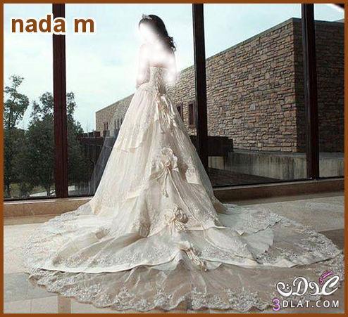 فساتين زفاف روعة Wedding Dress لاحلى عروسة فساتين افراح رائعة صور فساتين زفاف