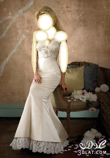 فساتين افراح جديدة Wedding Dress لاحلى عروسة فساتين زفاف رائعة صور فساتين عرائس