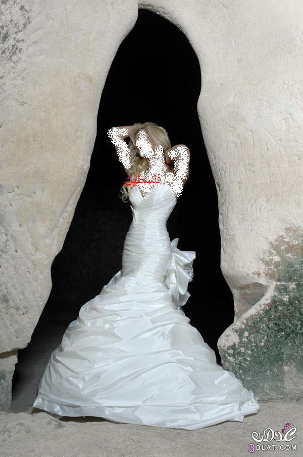 فساتين فخمة للعرائس 2021 اجمل تشكيلة فساتين زفاف 2021 ازياء عرائس