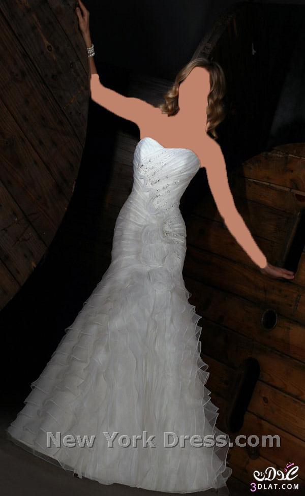 فساتين أنيقة و رقيقة بجد فساتين زفاف رووووووعة