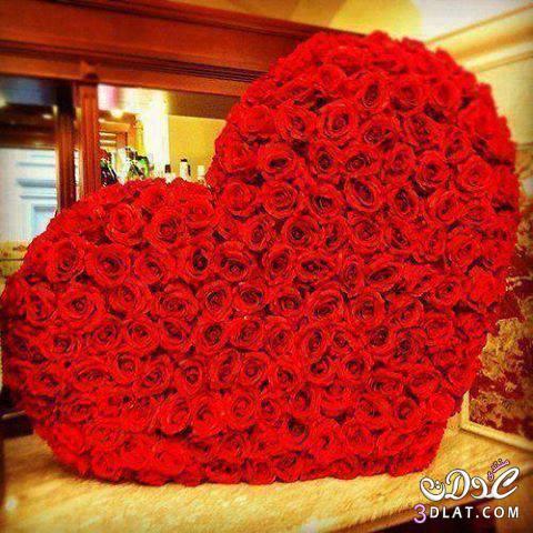 بالصور ورد علي شكل قلب 13807976871