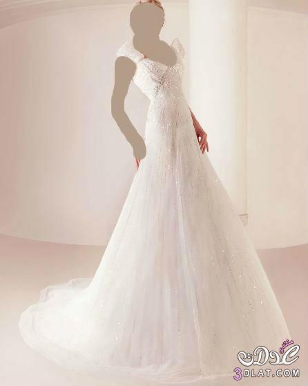اجمل فساتين الزفاف 2013 13830648243