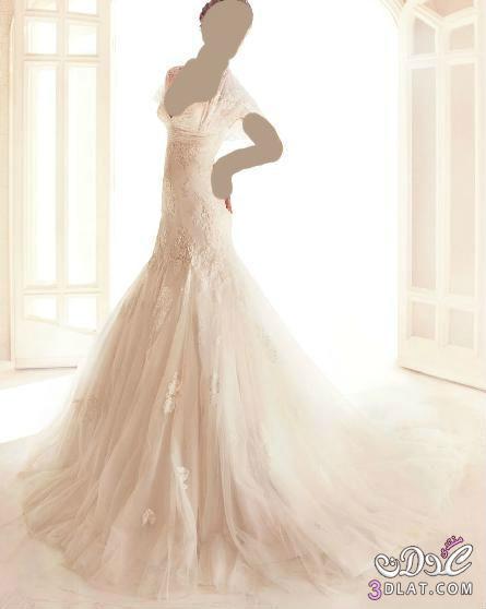 اجمل فساتين الزفاف 2013 13830648245