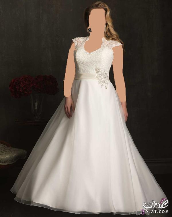 فساتين زفاف x-large