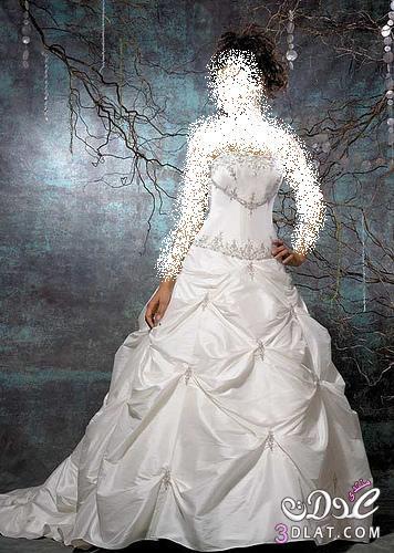فساتين أفراح لليله العمر ,فساتين لزفاف 2021 ,جميله