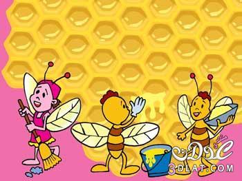النحل والحشرة الشريرة جميلة و**ورة