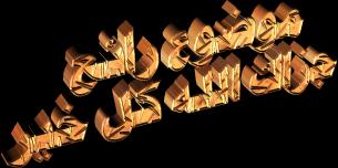 من هي عمرة بنت عبد الرحمن 13873294232