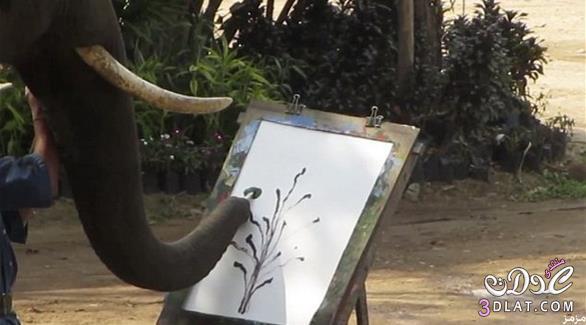 تايلند يرسم لوحات فنية غاية