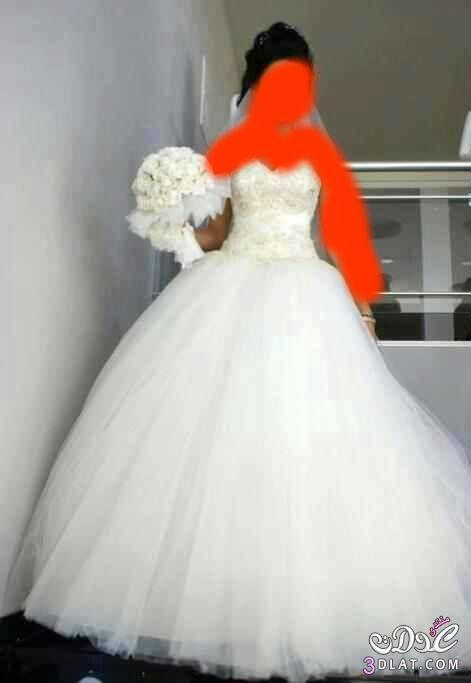 فساتين زفاف فى منتهى الشياكة فساتين زفاف ولااروع من كدا