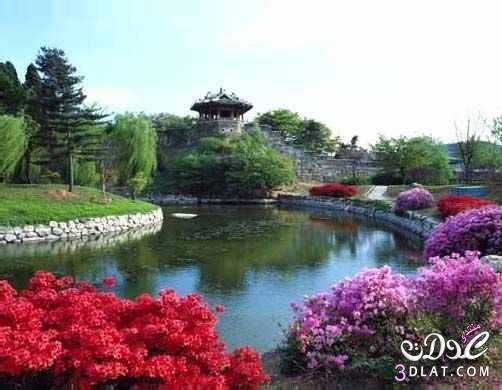 صور من الطبيعة 13879944701.jpg