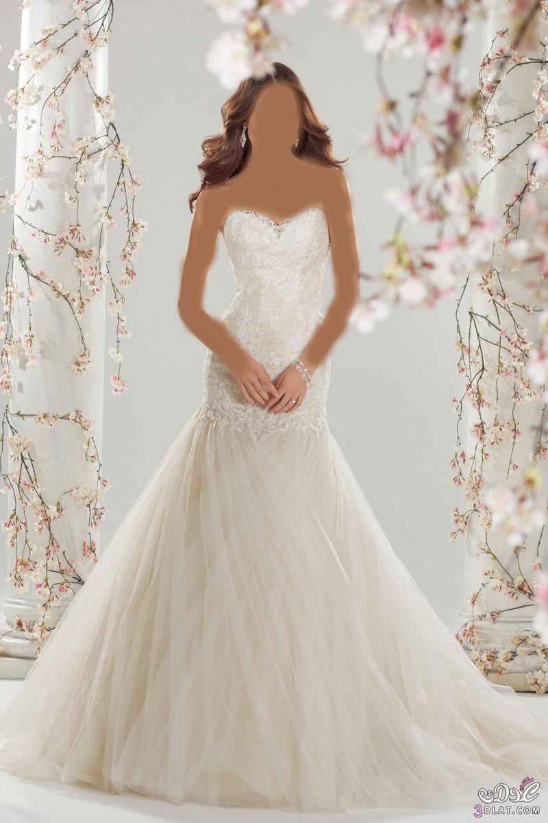 فساتين زفاف جديدة فساتين زفاف مميزة لأحلى عروس فساتين زفاف تحفة عصرية وجديدة