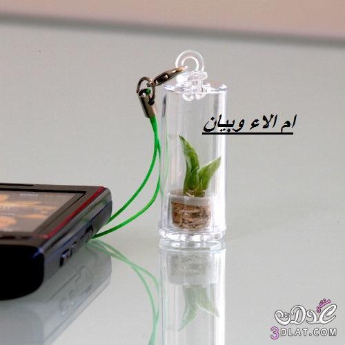 اكسسوارات موبايل روعة وتحتوي نباتات