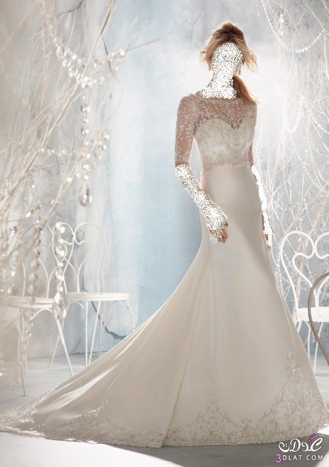 فرحة العمر،أحلى فساتين زفاف2019 ،أجمل فساتين الأفراح