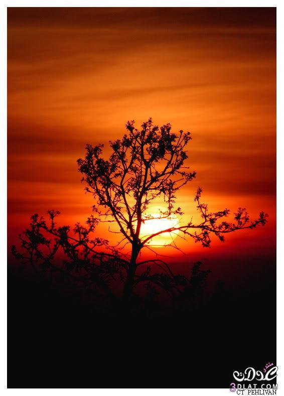 صور غروب الشمس صور عن غروب الشمس صورالشمس غائبه صور الغروب الرائع 13890343882.jpg