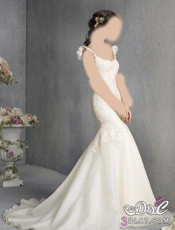 فساتين فرح صور فساتين فرح 2021 أجمل فساتين الفرح والزفاف