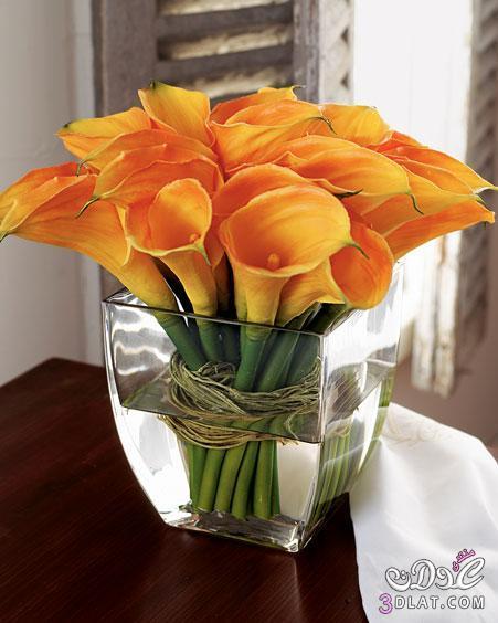 فازات لمحبى الجمال , انتيكات لجمال منزلك 138944174215.jpg