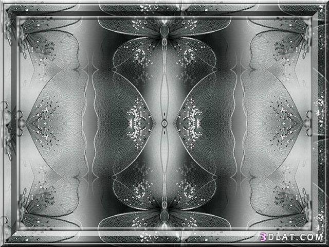 لوحات فارغة للتصميم عالية الجودة،لوحات رائعة 3dlat.com_02_18_d841