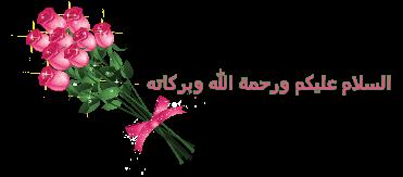 أجمل الأماكن السياحية الاسكندرية لازم تزورها 3dlat.com_04_18_6242