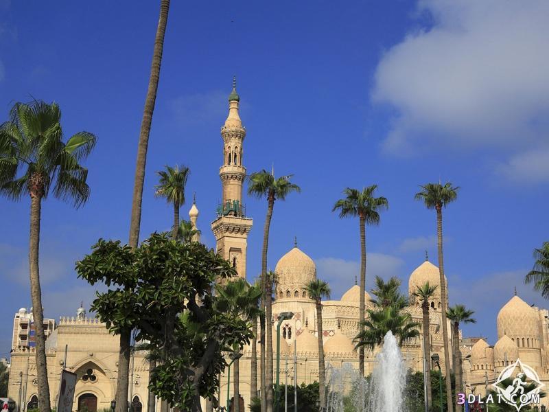 أجمل الأماكن السياحية الاسكندرية لازم تزورها 3dlat.com_04_18_d593