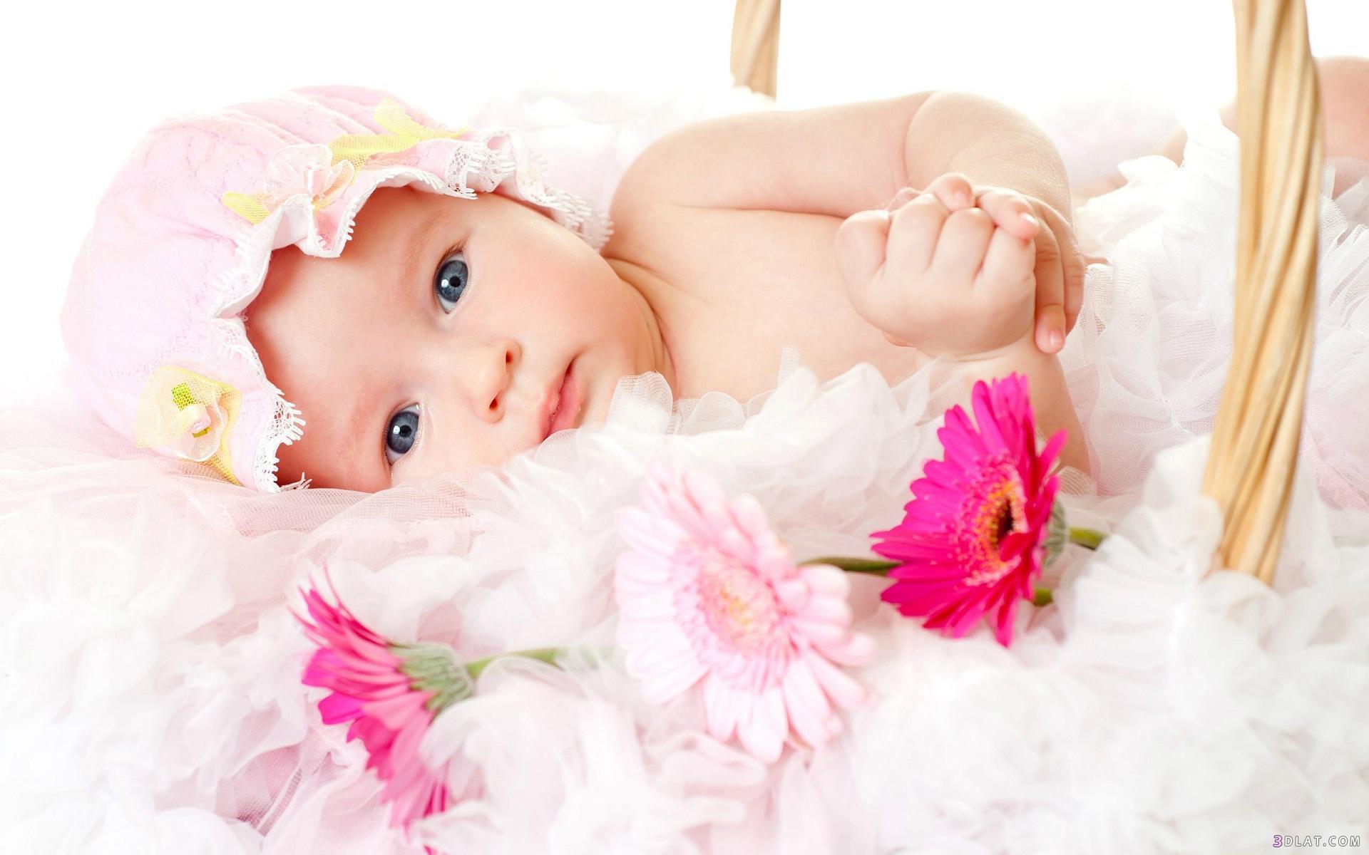 أطفال بيبي غاية الرقة والجمال 2019 3dlat.com_04_18_dc22