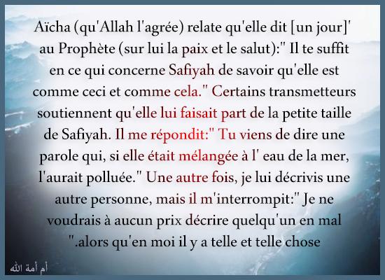 """sur lui la paix et le salut):"""" Il te suffit en ce qui concerne Safiyah de"""