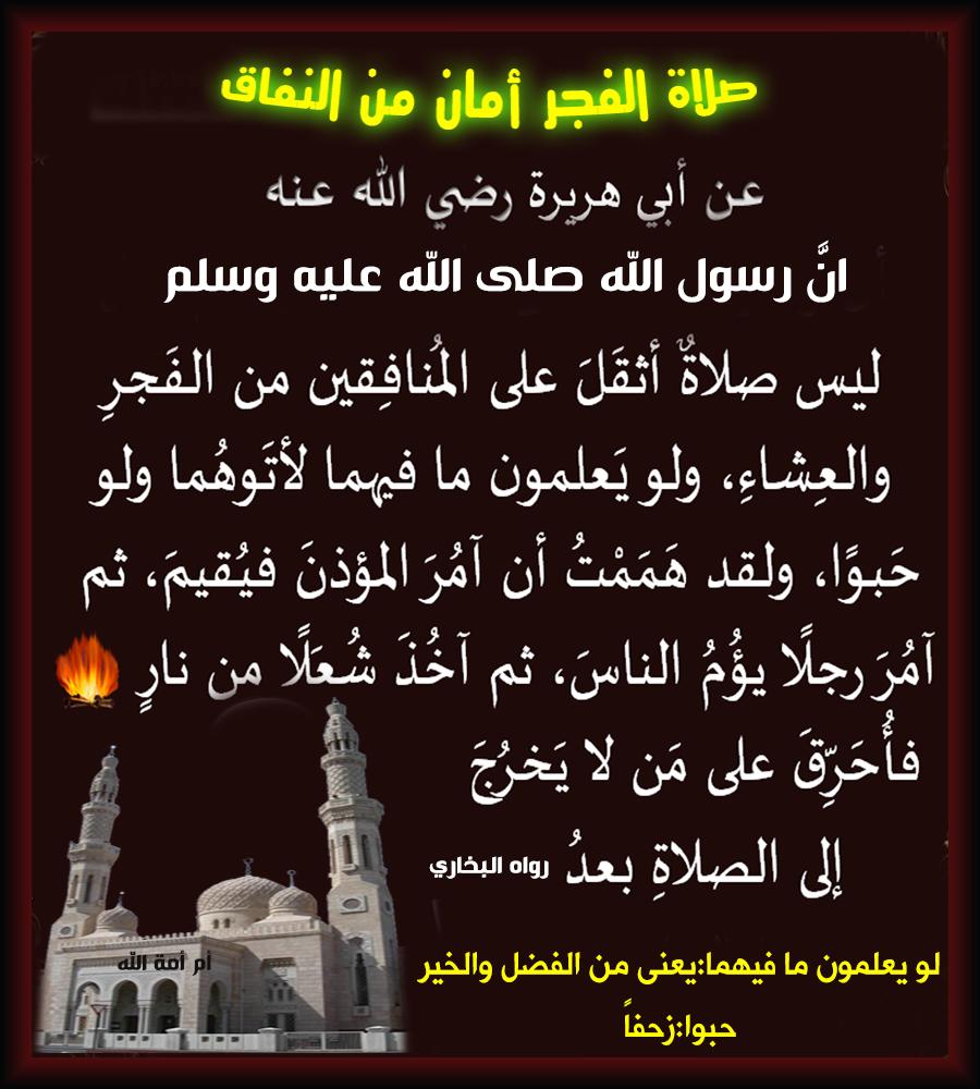 هل يصح قضاء سنة الفجر بعد صلاة الفجر متى يصلي المسلم سنة الفجر إذا فاتته منتدى الامـة
