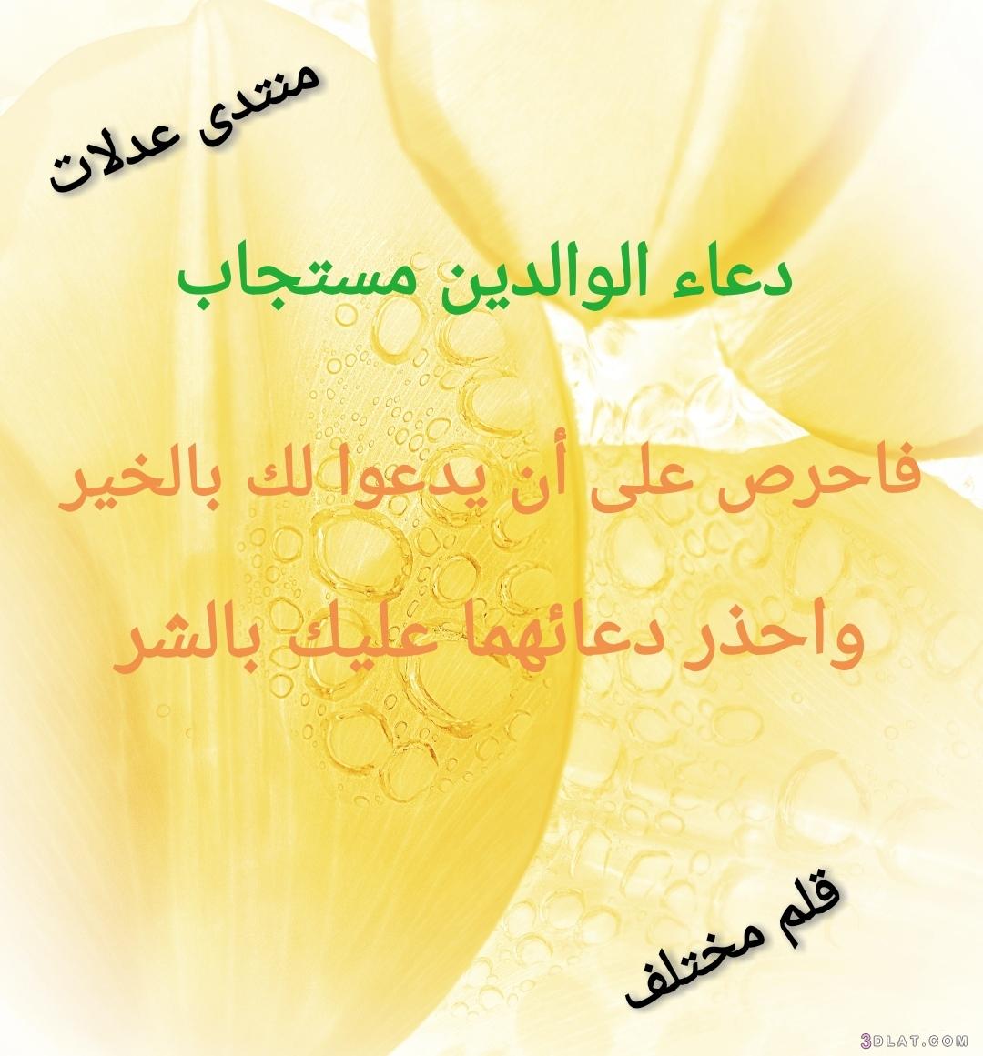 تصميمي الوالدين العقوق)) 3dlat.com_10_18_cb0d