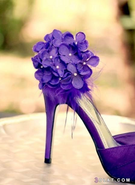 أشيك أحذية سوارية أحذية سهرة أحذية 3dlat.com_10_19_5d64