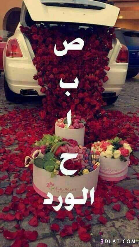 صباح الخير لصباح الخير 2019 صباح 3dlat.com_12_18_02be