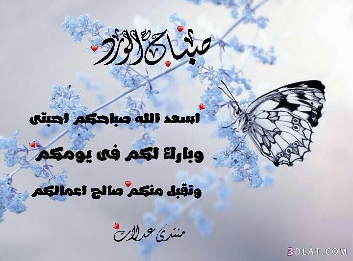 صباح الخير تصميمى.ادعية للصباح2019.صور صباح الخير 3dlat.com_12_18_3218