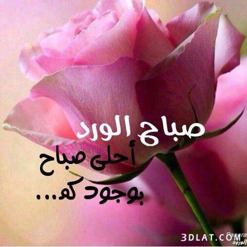 صباح الخير لصباح الخير 2019 صباح 3dlat.com_12_18_3af3