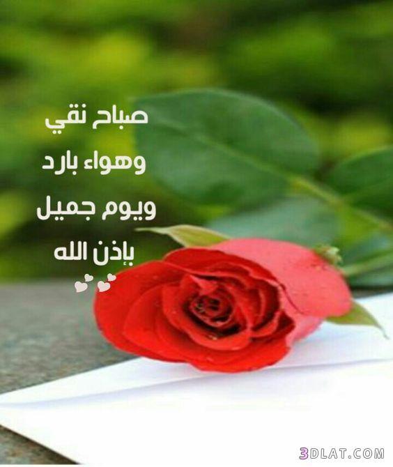 صباح الخير لصباح الخير 2019 صباح 3dlat.com_12_18_ca53