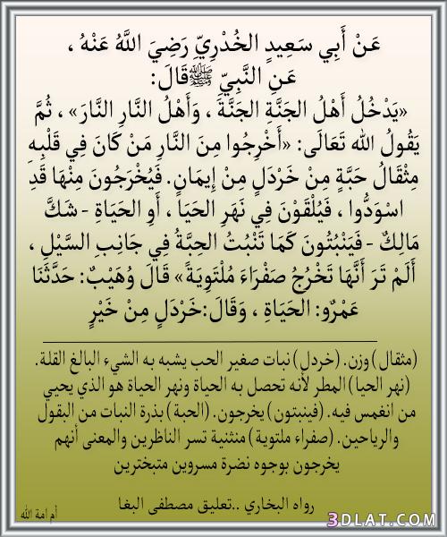 تصميمى إسلامية لأحاديث الحبيب _صورمن أحاديث 3dlat.com_12_18_ce85