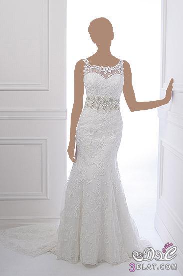 الرقة و النعومة في اجمل فساتين زفاف