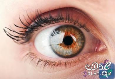 ������� ������� ������������ ������� ������� ���� ����� �� ������� ������� 3dlat.com_1390115069