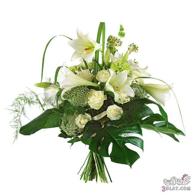 صور ورود طبيعية 2014,مناظر جميلة من الطبيعة,أزهار وورود رومانسية جميلة 3dlat.com_1390174247