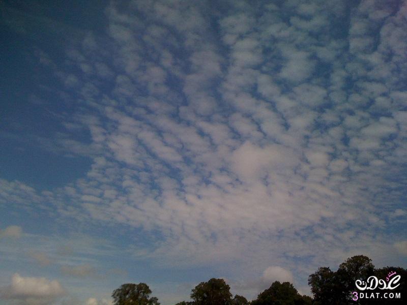 [بعدستي] تصويري مناظر طبيعية 2014,حديقة