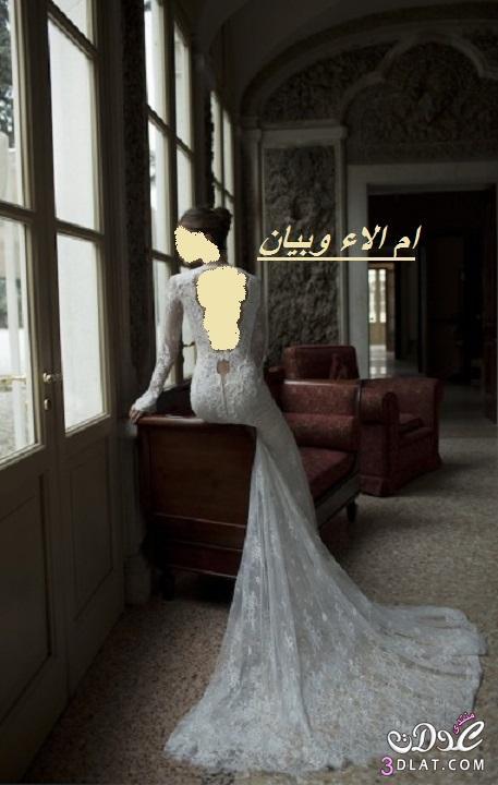فساتين زفاف من berta لعروس 2019,احلى فساتين زفاف 2019 ج 1