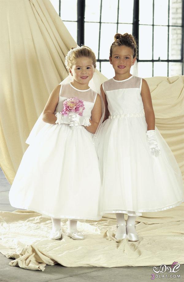 5872adbd5 فساتين زفاف اطفال 2020 , فساتين اطفال باللون الابيض - نم نم