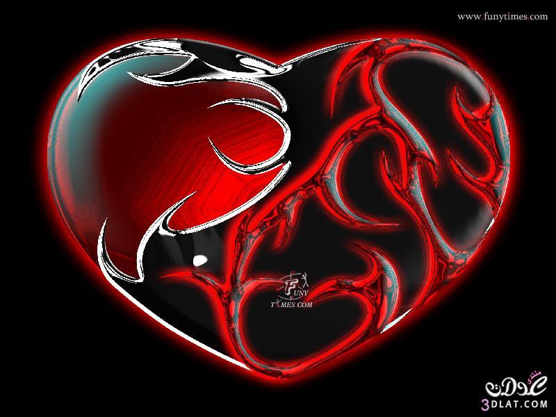 الحب عباره عن قلب اجمل صور قلوب لاجمل حبيب قلوب