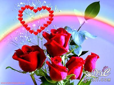 b612eaade صور قلوب جميله خلفيات رومانسيه صور رومانسيه رائعه - جويريه