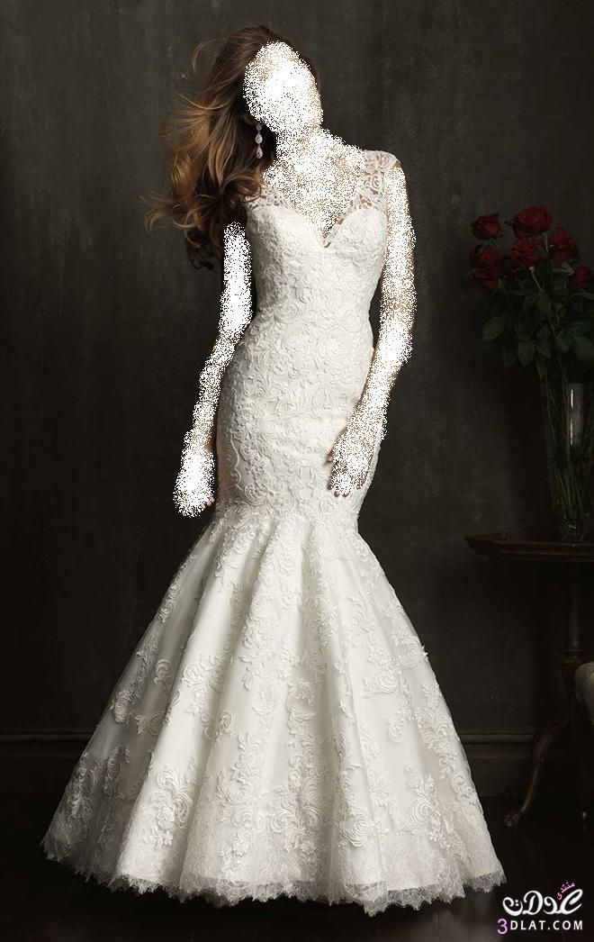 فساتين زفاف رائعة، أجمل فساتين الزفاف ، أحلى فساتين الزفاف 2014